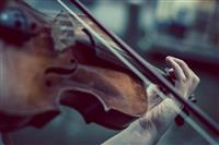 Energetic classical music played by strings.